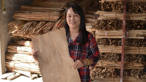 Mrs Renu holidng mulberry bark, used to make saa paper