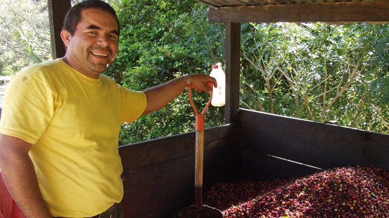A coffee farmer with harvested coffee cherries