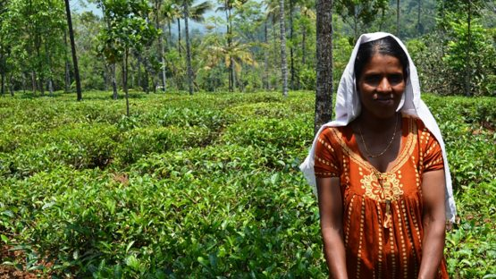 Sobana Prakash, a tea farmer and landowner