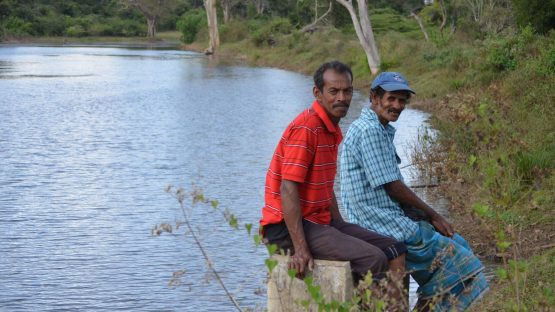 Spice farmers sitting on a dam funded through Tarde Aid capacity building funds