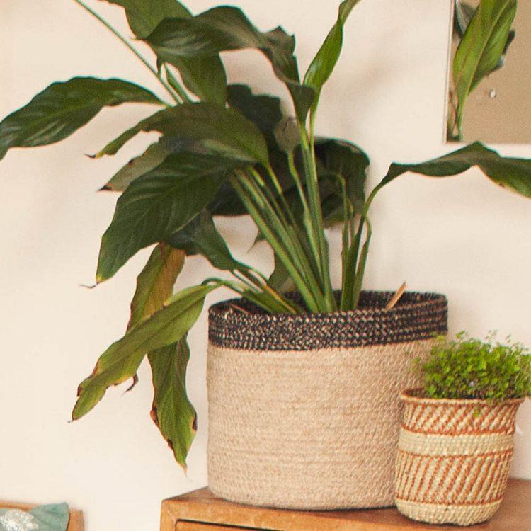 Jute basket with black border | TradeAid