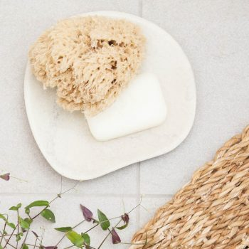 Organic natural body sea sponge | TradeAid
