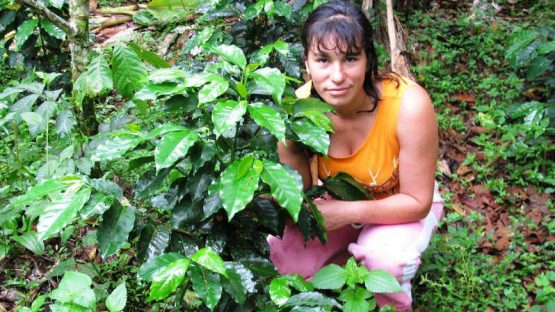 Coffee farmer Olga Arique with young coffee plants