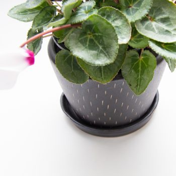 Pewter ceramic planter with saucer | Gallery 1 | TradeAid