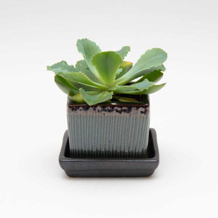 Antique green ceramic planter | TradeAid