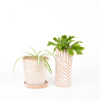 Terracotta planter | Gallery 2 | TradeAid