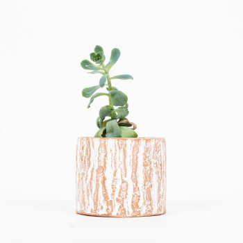 Tree trunk terracotta planter | TradeAid
