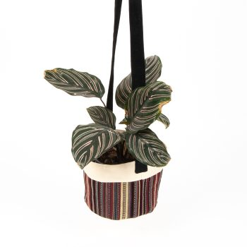 Striped cotton hanging planter | Gallery 1 | TradeAid