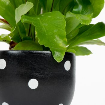 Small black planter pot | Gallery 1 | TradeAid