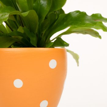 Small yellow planter pot | Gallery 1 | TradeAid
