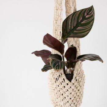 Cotton macrame sika | Gallery 1 | TradeAid