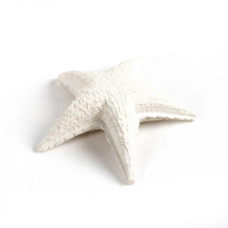 Starfish paperweight | TradeAid