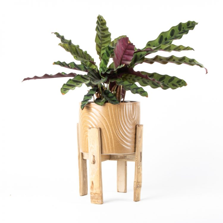 Ceramic planter with stand | TradeAid