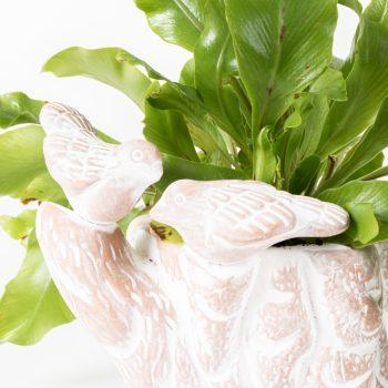 Love birds planter | Gallery 1 | TradeAid