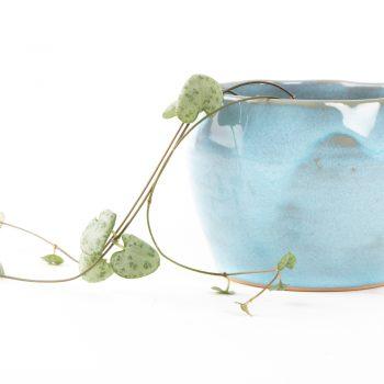Blue stoneware planter | Gallery 1 | TradeAid