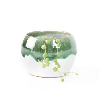 Green lipped planter | TradeAid