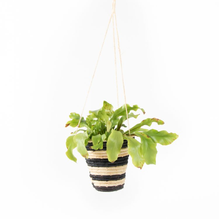 Striped hanging basket   TradeAid