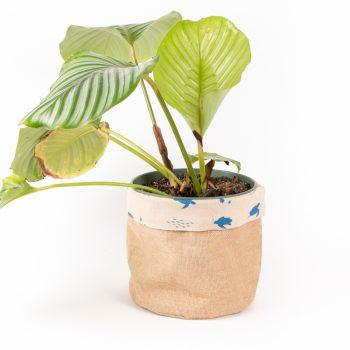 Reversible marine print basket   TradeAid