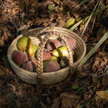 Small dolna basket | TradeAid